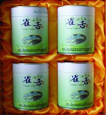 贵州特产―侗乡春雀舌茶